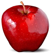 سیب رد چیف